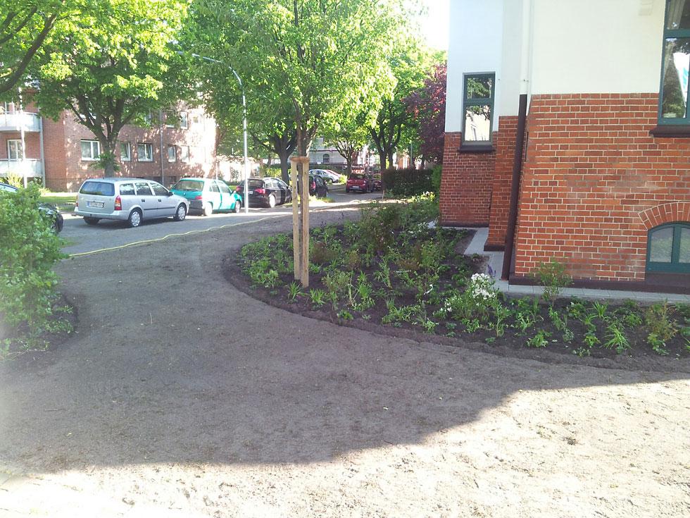 Anpflanzung / Strassenbegrünung / Gartenbau in Wilhelmshaven