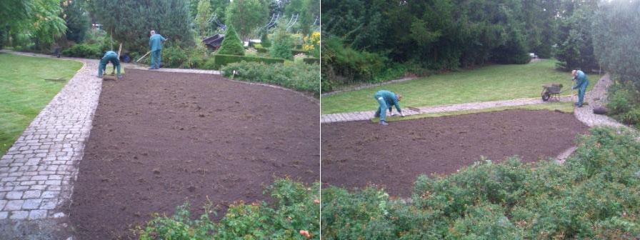 Gartenbau / Gartengestaltung - Rosarium in Wilhelmshaven