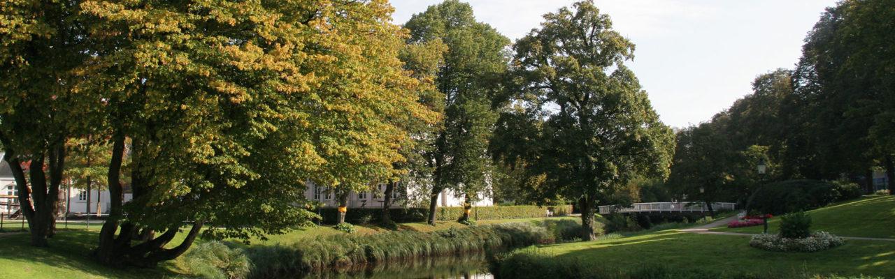 Gartenbau und Gartenpflege in Wilhelmshaven